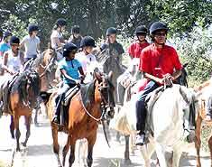 curso ingles verano salamanca caballo equitacion