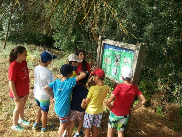 Excursión del Campamento Residencial Salamanca con idiomas