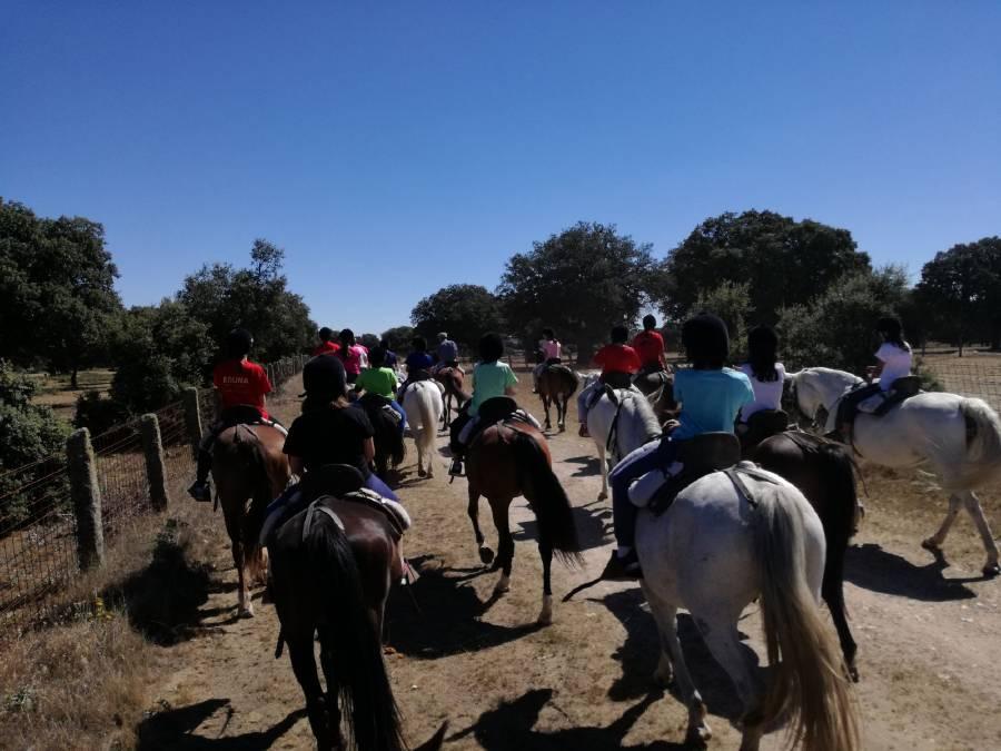 Equitación niños colonia de verano