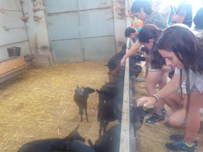 Quesería Excursion niños Asturias