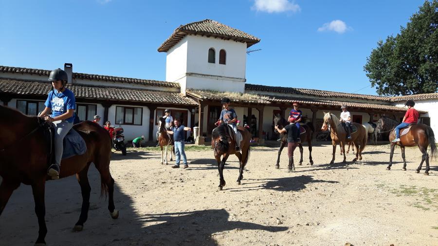Equitacion campamentos de verano