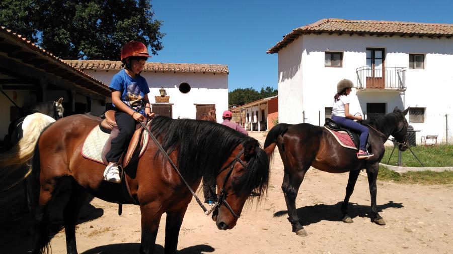 Equitación Campamento de verano en Segovia Riaza
