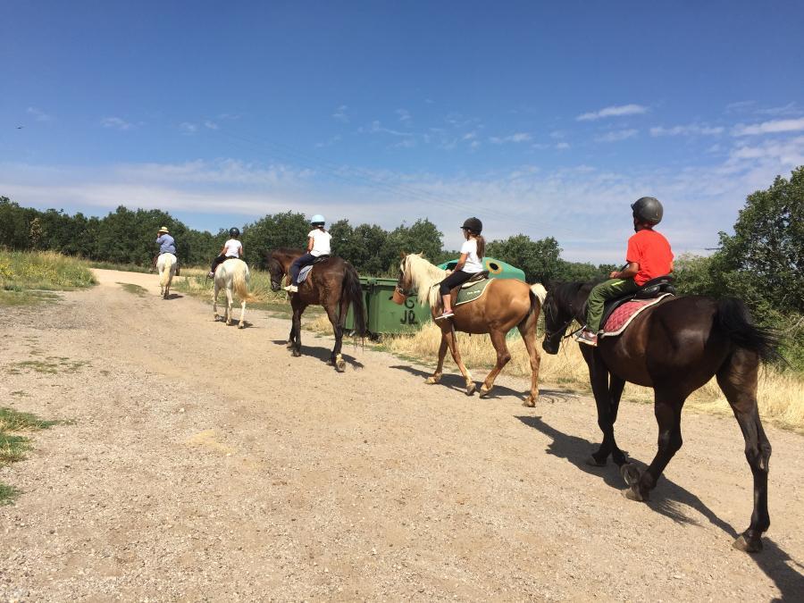 Equitación campamento de verano