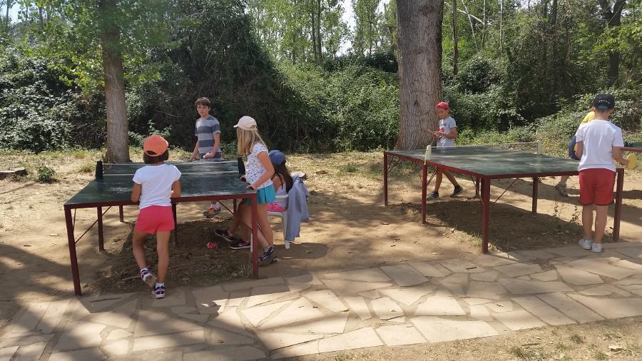 juegos niños campamentos