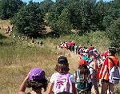 Senderismo en la colonia de verano para niños en Agosto.
