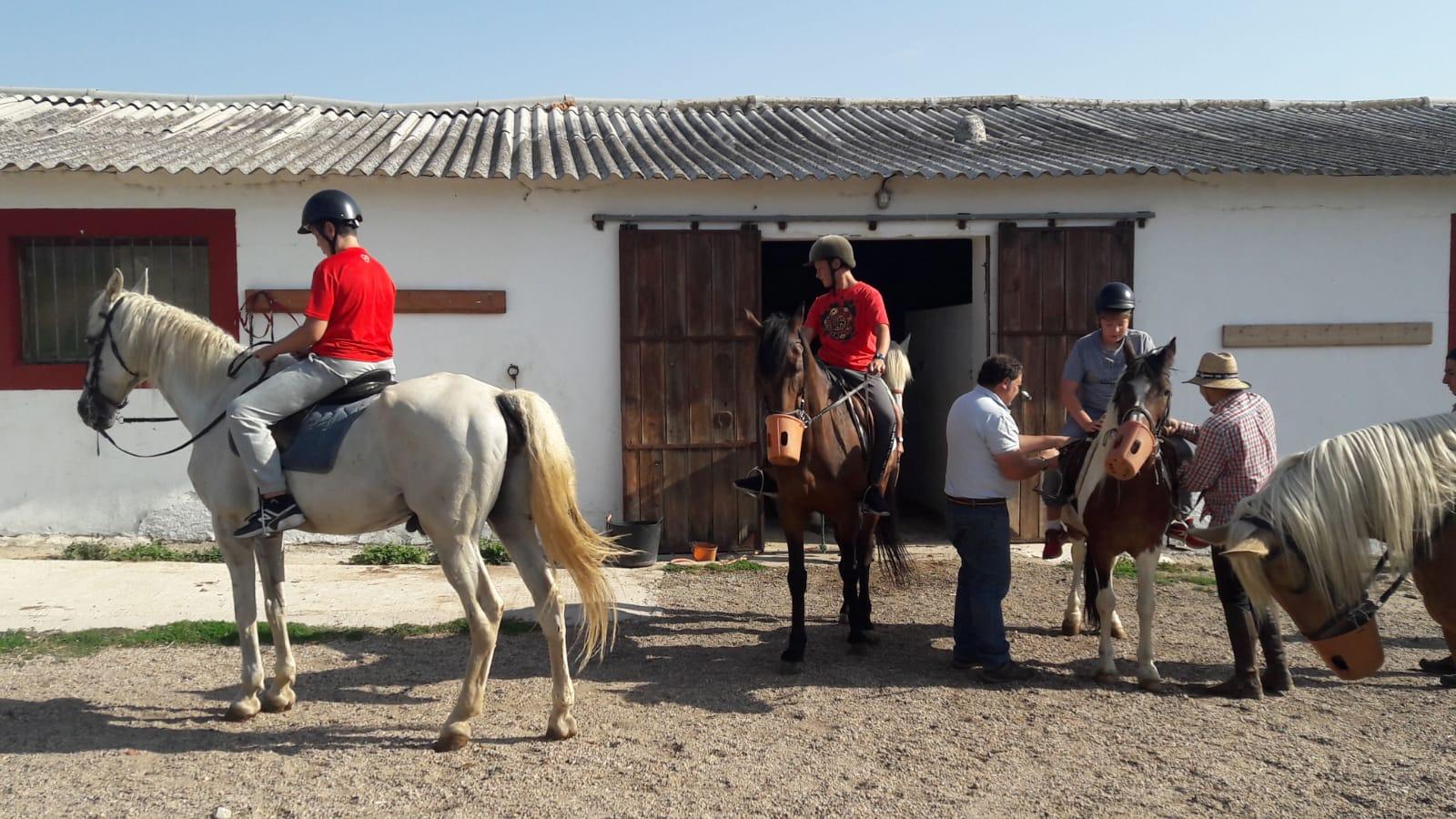 Caballos y equitación en el campamento de julio