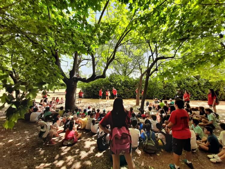 Diario campamento Salamanca y curso inglés y francés 2019