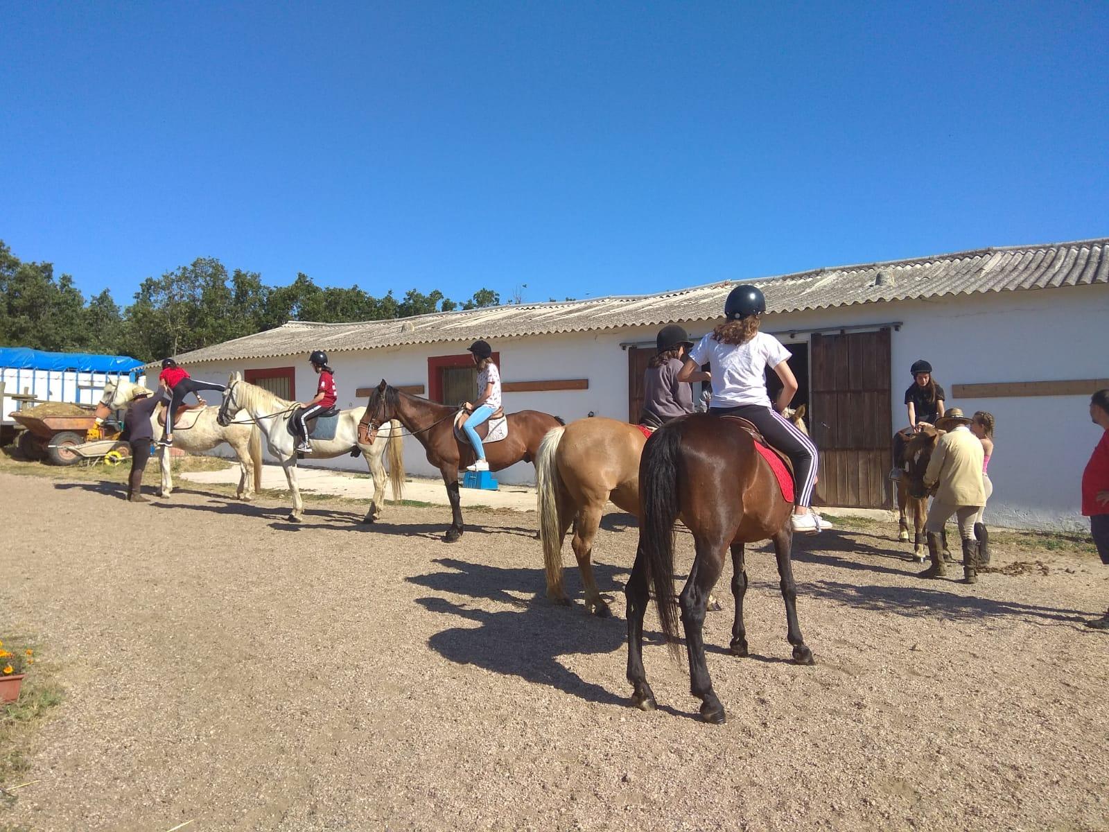 Caballos. Equitación en campamento de verano julio Sepulveda.