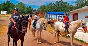 Alergia al caballo. Niños alergicos en campamentos de verano