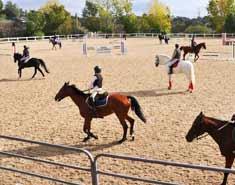 Equitación. Acampada de verano para niños Toledo julio.