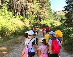 Senderismo Sierra de Madrid. Colonia de verano para niños