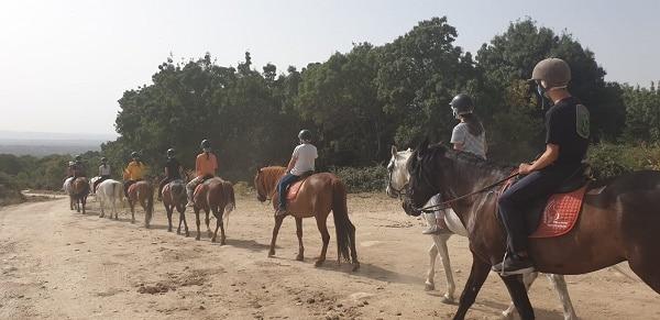 Ruta a caballo Madrid